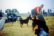 Playing with dogs, The Mother Festival, Somerset, 1995