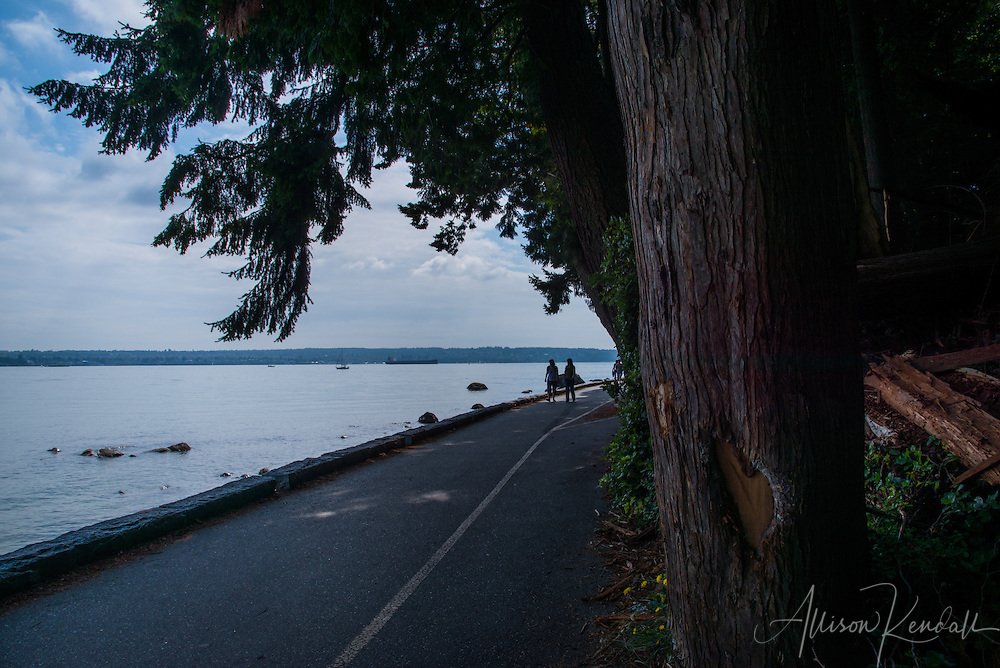 Scenes from a summer day in Stanley Park, British Columbia