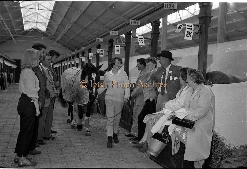 "06/08/1962<br /> 08/06/1962<br /> 06 August 1962<br /> Preparations for the Dublin Horse Show at the RDS, Ballsbridge, Dublin. Image shows Miss Patricia Mitchell of Ballydrain, Comber, Co. Down arriving at the show with her pony ""Rebecca"", watched by from left: Carol Dawson; Malcolm Milligan; David Mitchell and right of pony, John Gwynne; David Mitchell; Mrs J. Moorehead and Mrs D. Mitchell, all from Comber, Co. Down."