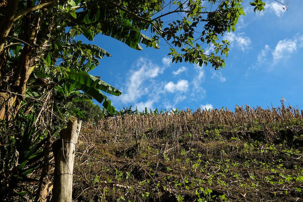 Jalapa, Nueva Segovia - Nicaragua 10-2014<br /> Photography by Aaron Sosa