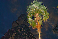 Palm tree and Mayan temple at dusk in the Yucatan