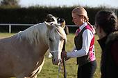 Class 13 - Inhand Novice Pony