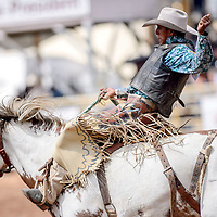 Jalen Joaquin leaves the bucking chutes for a saddle bronc  ride during the Navajo Nation Fair rodeo at the Navajo Nation Fairgrounds in Window Rock Saturday.