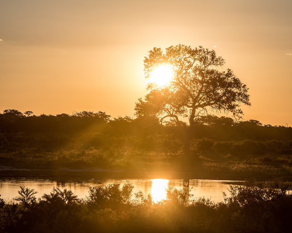 The sun sets over the grasslands in the Hwange National Park, Hwange, Zimbabwe