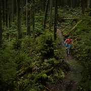 Mountain biking on Mt. Seymour.