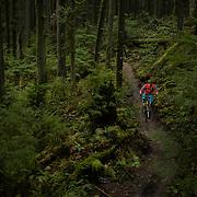 Mountain biking on Mt. Seymour.