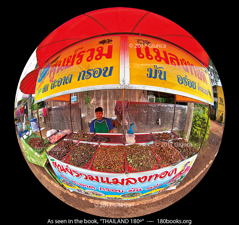 Fried insect vendor in Loei, Thailand