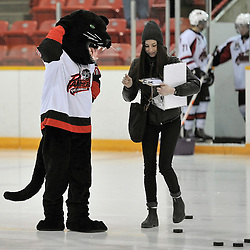 PICKERING, Ontario - Feb 28 : OJHL North East Conference playoff series round one, Kingston Voyageurs vs Pickering Panthers.  Pickering Panthers Hockey Club mascot 'Pkat' and assistant Jubilee decide on the winner of Chuck-a-Puck.<br /> (Photo by Gary Keys / OJHL Images)