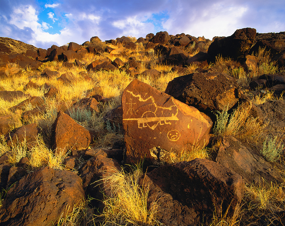 0211-1009 ~ Copyright: George H. H. Huey ~ 'Lion' petroglyph, Rinconada Canyon. @ A.D. 1300-1650. Petroglyph National Monument, New Mexico.