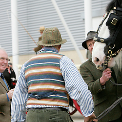 Shire Horse Society Spring Show 2012