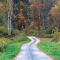 Unpaved rural road with trees in autumn