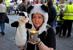 © Licensed to London News Pictures. 26/08/2013. Minehead, Somerset, UK.  Picture of Debs from London. People protesting against the planned badger cull gather hold a candlelit vigil and march in the town of Minehead in West Somerset which is one of the areas where badgers will be shot by marksmen in a pilot trial with the eventual aim of reducing bovine turberculosis in cattle.  28 August 2013.<br /> Photo credit : Simon Chapman/LNP
