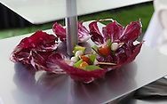 Ann Arbor Chef's catering event celebration