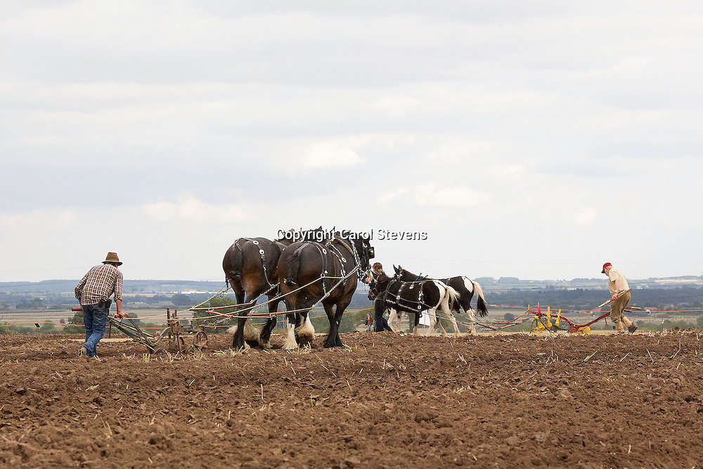 Festival of the Plough 2015  Epworth