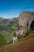 Rocky cliff and green valley seen from the Niederhorn, Berner Oberland, Switzerland.