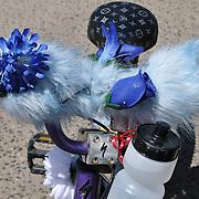 Furry blue handlebars seen during Cyclovia Tucson 2011. Bike-tography by Martha Retallick.