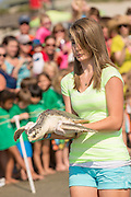A young volunteer carries Bay, a 11-pound Kemp's Ridley sea turtle to the ocean during the release of rehabilitated sea turtles August 6, 2014 in Isle of Palms, South Carolina. The turtle which is critically endangered accidentally swallowed a fishing hook and had it surgically removed by the sea turtle hospital at the South Carolina Aquarium in Charleston.