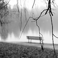 An empty out of focus park bench against fog and hanging branches.