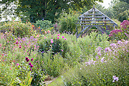 August at Wollerton Old Hall Garden