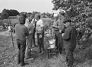 Läggning av agtak, täckating, i Hamra på Gotland.