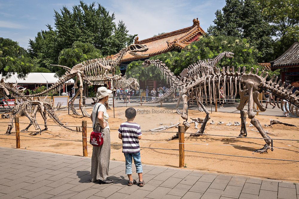 Exhibition of dinosaurs at Jing Shan Park during summer in Beijing, China