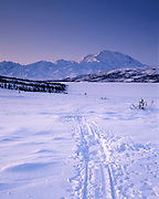 Sunrise, Dog sled, dog sled track, dog sled tracks, Winter, Ice, snow, Mt. McKinley, Mount McKinley, Denali, Denali National Park, National Park, Alaska