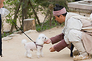 Korean Folk Village. TV movie set. Poodle with actor playing a farmer.