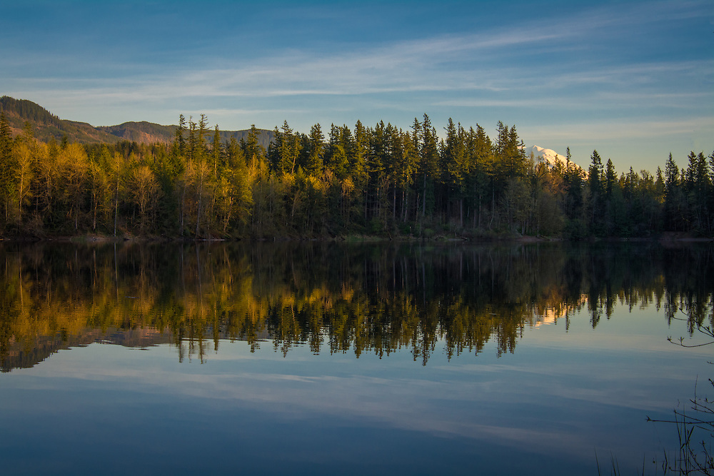 Deep Lake near the Green River Gorge is about 40 miles southeast of Seattle, Washington is particularly beautiful in the late afternoon. It also happens to be an amazing place for biodiversity. The woods around this lake are filled with all kinds of birds, especially during migration, and the astounding variety of wildflowers changes every time you visit. This image was taken during a rare early spring day when it wasn't raining. Just over the trees you can see the peak of Mount Rainier in the distance.