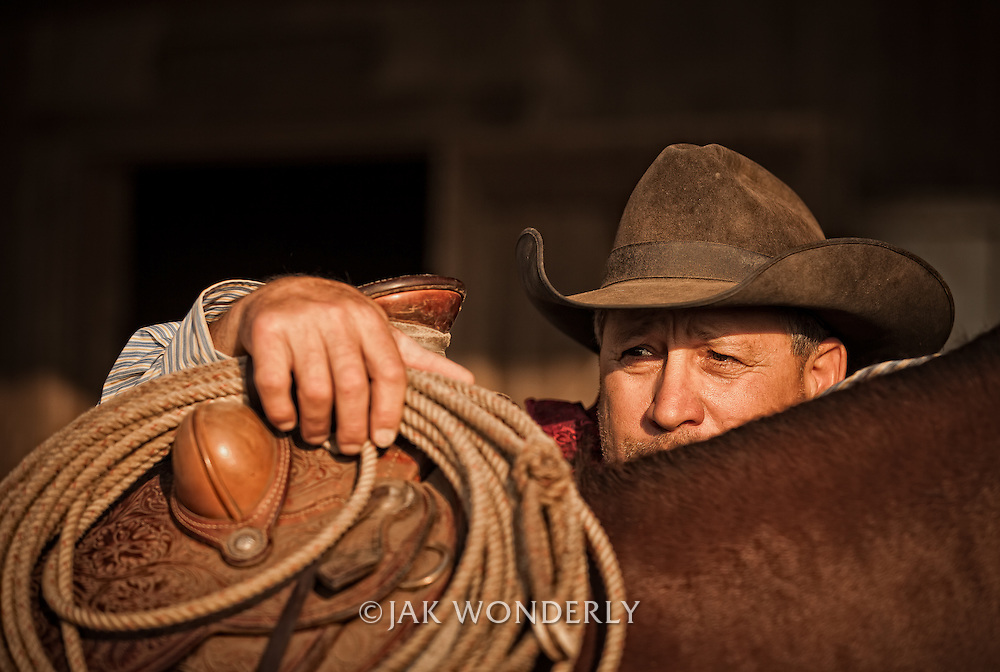Cowboy with lasso rope peaking over the saddle of his horse. Petaluma, California, USA.<br /> <br /> Model Release Available