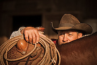 Cowboy with lasso rope peaking over the saddle of his horse. Petaluma, California, USA.<br />