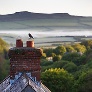 Sunrise and mist seen over the roof tops of St Davids, Wales