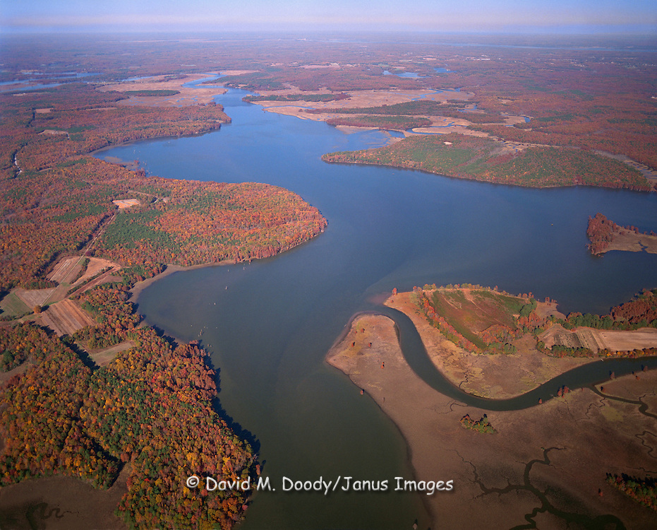Fall colors in aerial view of the Chickahominy River looking north towards the York River in the far distance.  Charles City County Virginia is to the left and James City County to the right of the river.  Jamestown Colony leader John Smith was captured by the Powhatan Indians (Pocahontas legend) on the upper reaches of this River.