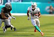 Sep 23, 2018; Miami Gardens, FL, USA; Miami Dolphins wide receiver Kenny Stills (10) runs after a catch at Hard Rock Stadium against the Oakland Raiders. The Dolphins defeated the Raiders 28-20. (Steve Jacobson/Image of Sport)