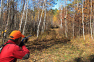 Ruffed Grouse Hunter Aims at an Oncoming Grouse