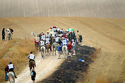 Endurance<br /> World Equestrian Games Jerez de la Fronteira 2002<br /> Photo © Dirk Caremans