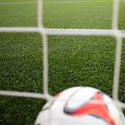 A generic image of a professional soccer goal mouth showing the netting and goal mouth white line and a  professional match football. Photo Tim Clayton