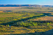 Canadian priaire grasslands  (West Block) <br /> Grasslands National Park<br /> Saskatchewan<br /> Canada