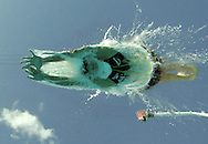 Australia's Leisel Jones swims en route to a gold medal in world record time of 2:21.72 in the women's 200M Breaststroke at the FINA World Championships in Montreal, Canada Friday 29 July, 2005.