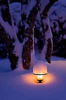 A light in the ground lies under a blanket of snow and gives off the soft radiant lighting characteristic of it's tungsten source.  Courtenay, The Comox Valley, Vancouver Island, British Columbia, Canada.