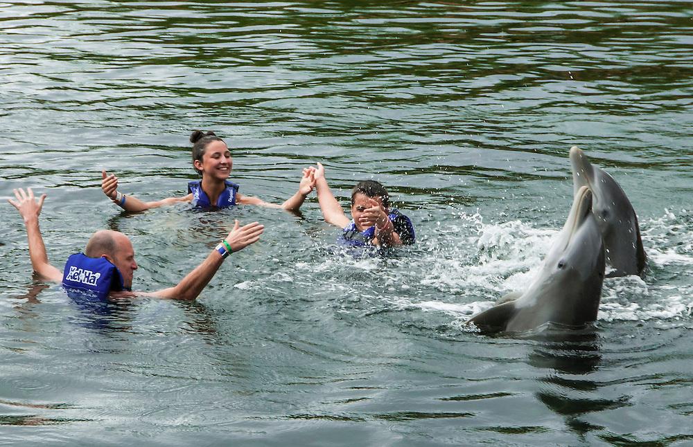 Dolphin Discovery at Xel-Ha nature park, Riviera Maya, Mexico.