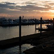 Flameno Marina in Panama City, Panama, at sunrise.