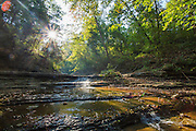 Tanyard Creek on Wednesday, Oct. 1, 2014, in Bella Vista, Ark. Tanyard Creek Recreational Area is a popular hiking destination that is located within city limits. Photo by Beth Hall