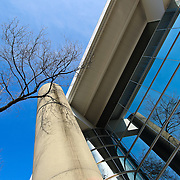 """""""Life in Glass""""<br /> <br /> Fantastic reflections of winter branches and blue skies against the angled windows and columns of the Power Center for the Performing Arts, on the central campus of the University of Michigan in Ann Arbor!!<br /> <br /> Architecture: Structures, buildings and their details by Rachel Cohen"""