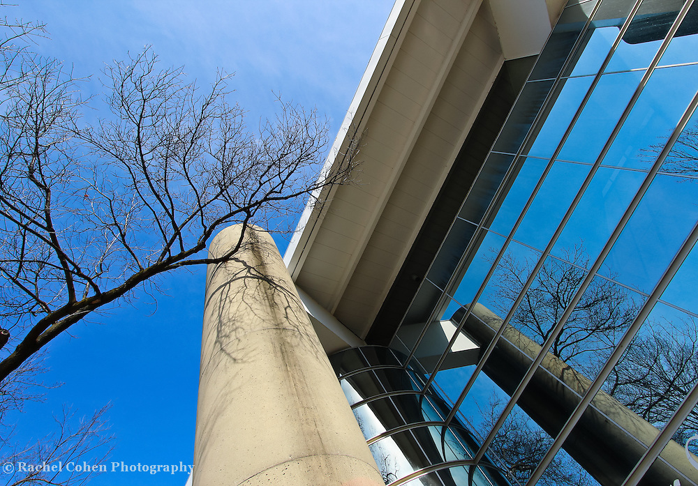 &quot;Life in Glass&quot;<br /> <br /> Fantastic reflections of winter branches and blue skies against the angled windows and columns of the Power Center for the Performing Arts, on the central campus of the University of Michigan in Ann Arbor!!<br /> <br /> Architecture: Structures, buildings and their details by Rachel Cohen
