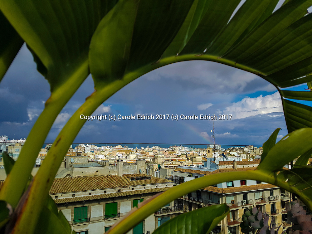 Rainbow and Palma seen from under curved banana leaves, from the roof of Nakar Hotel. (c) Carole Edrich 2017
