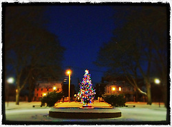 "A Christmas tree lit up in Prescott Park, Portsmouth, New Hampshire. iPhone photo, suitable for print reproduction up to 8"" x 10""."