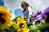 JEROME A. POLLOS/Press..Jodee Fyfe, owner of Westwood Gardens Nursey and a member of the Goodness Grows garden club, works at her Rathdrum business Wednesday tending to flowers. The garden club Fyfe works with is asking the city for permission to use a lot on the west side of the Parks and Recreation office on Main Street to build a community garden.