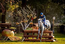 Van Winkel Steve, BEL, Glenkeeran Casanova<br /> Mondial du Lion - Le Lion d'Angers 2018<br /> © Hippo Foto - Dirk Caremans<br /> 20/10/2018