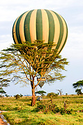 Hot air balloon safari. Photographed in Serengrti park, Tanzania