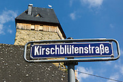 Schild Kirschblütenstraße, Burg Frauenstein, Wiesbaden, Hessen, Deutschland | streetname sign Frauenstein, Wiesbaden, Hesse, Germany